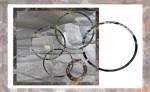 rings1web