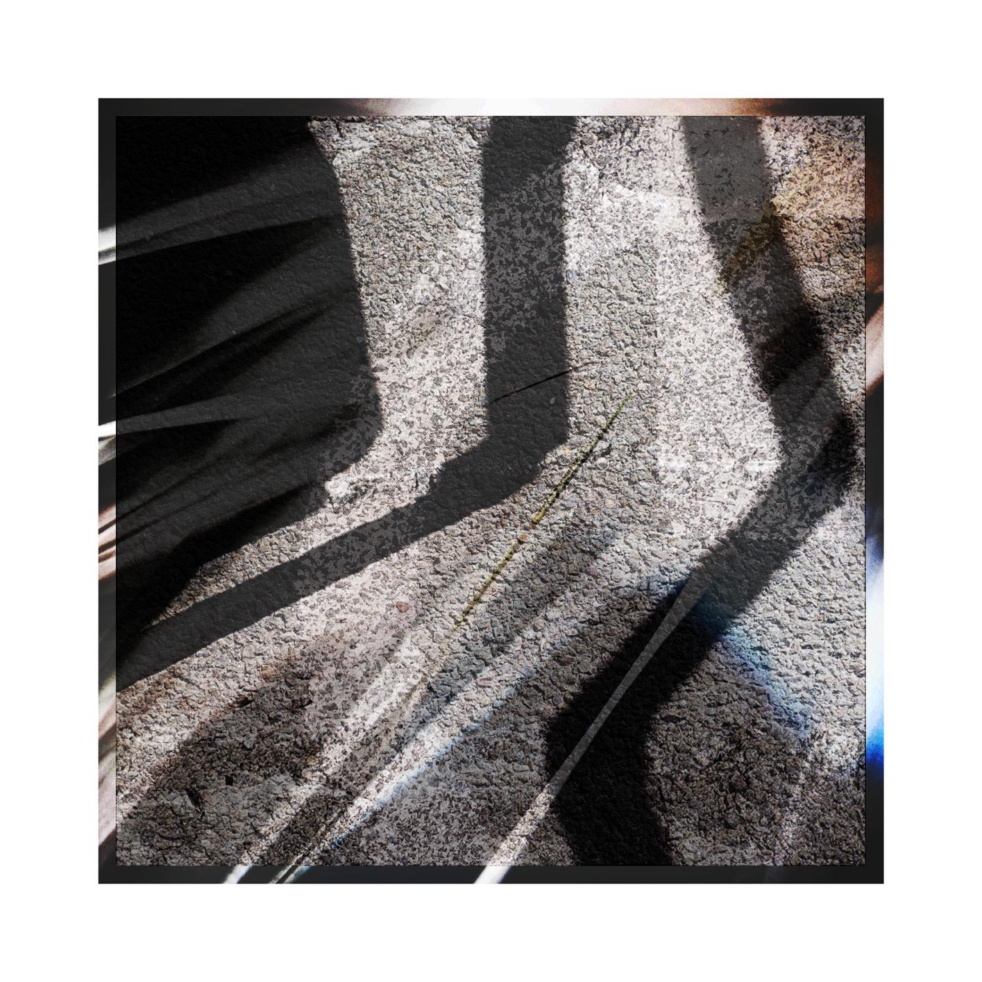 dd Shadow 1